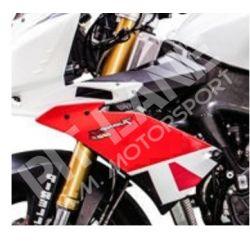 APRILIA TUONO V4 R 2011-2014 Racing Left panel in fiberglass