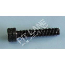 GM-OEM Parts (2000-2012) M6x30 screw