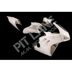 DUCATI PANIGALE V4-R 1000 2019-2020 KIT Racing in vetroresina