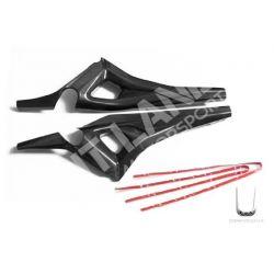 Ducati carbon Rear frame cover