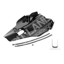 Ducati carbon Tail guard
