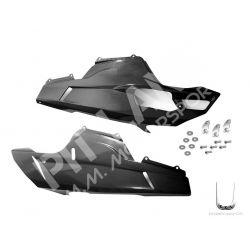 Ducati carbon Lower half fairing panels kit