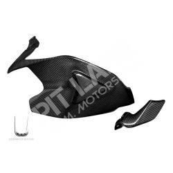 Cover forcellone con pinna Ducati in carbonio