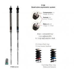 YAMAHA MT-07 2014-2020 MATRIS Fork Kit F15K